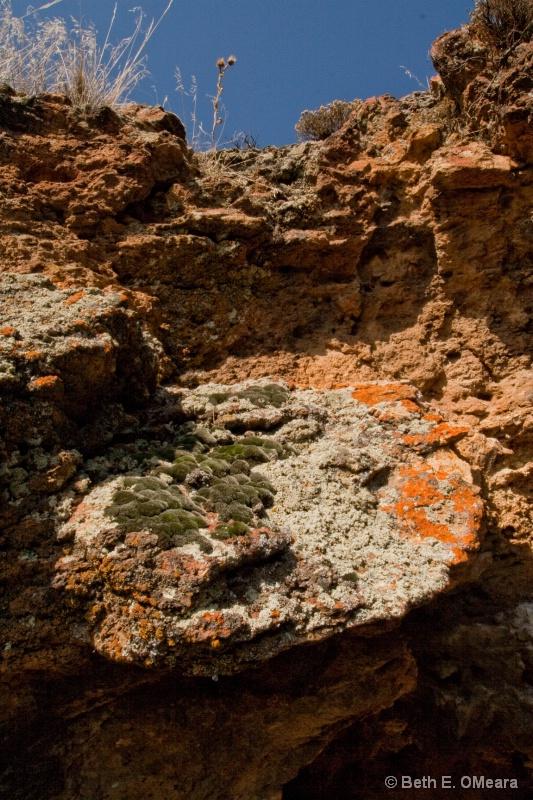 Rocks in the Owyhees - Moss