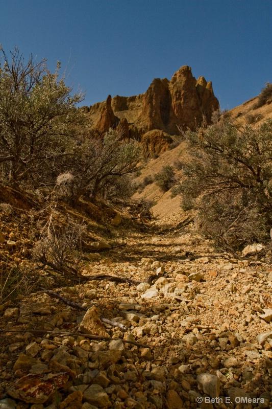 Owyhees - Dry creek bed