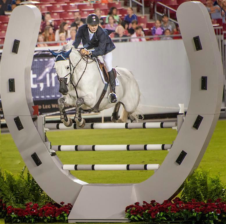 Horses do fly! Tampa, FL