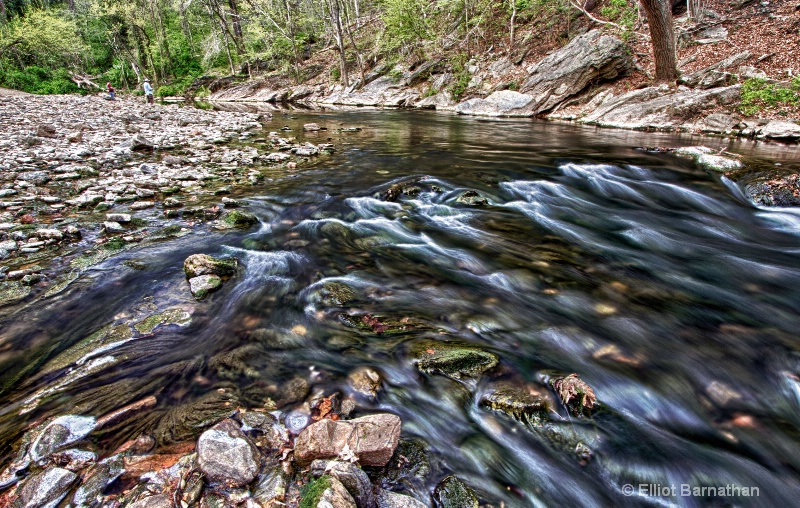 The Wissahickon in Spring 4