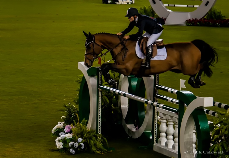 Equestrian Event, Tampa, FL