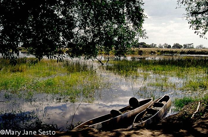 Pom-Pom, Botswana