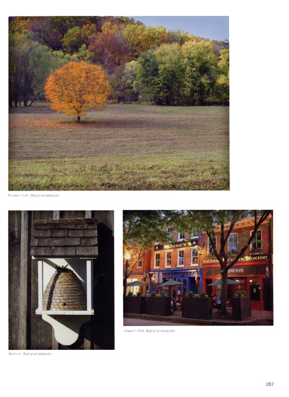 Page 207 - 100 Artists of the Brandywine Valley