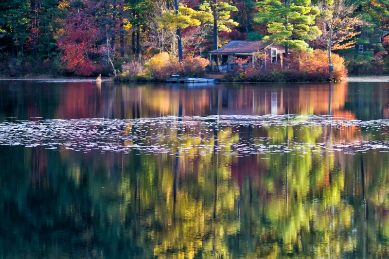 Autumn Haven
