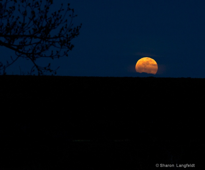 May 2012 Super Moon - being super!