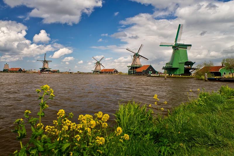 Windmills of Zaandam