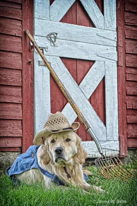 Farmer Marley
