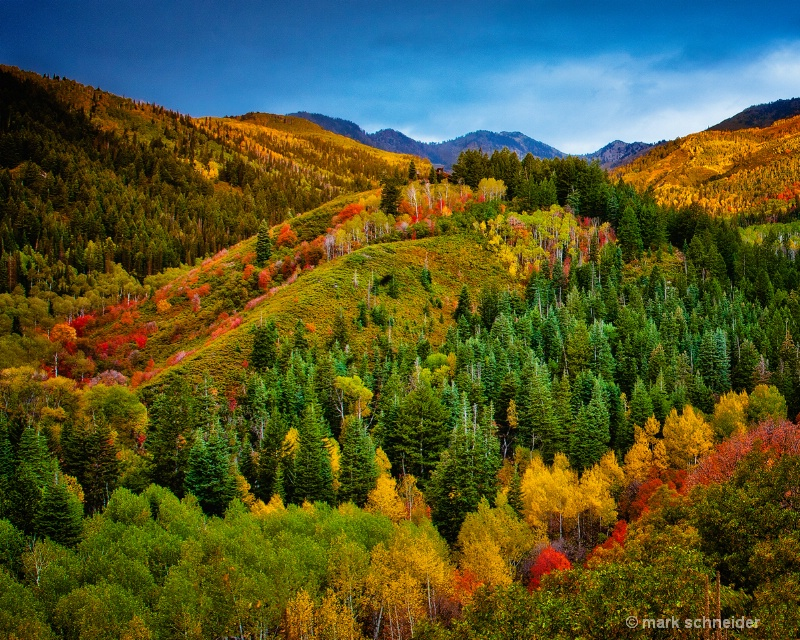 Colors of Wasatch