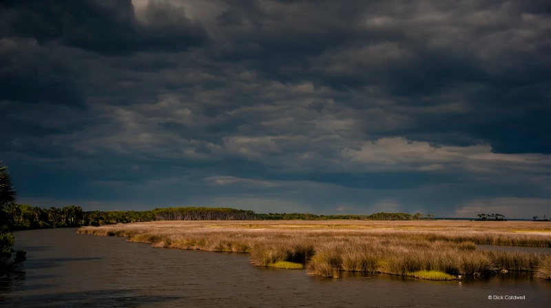 St. Marks NWR before the storm 3