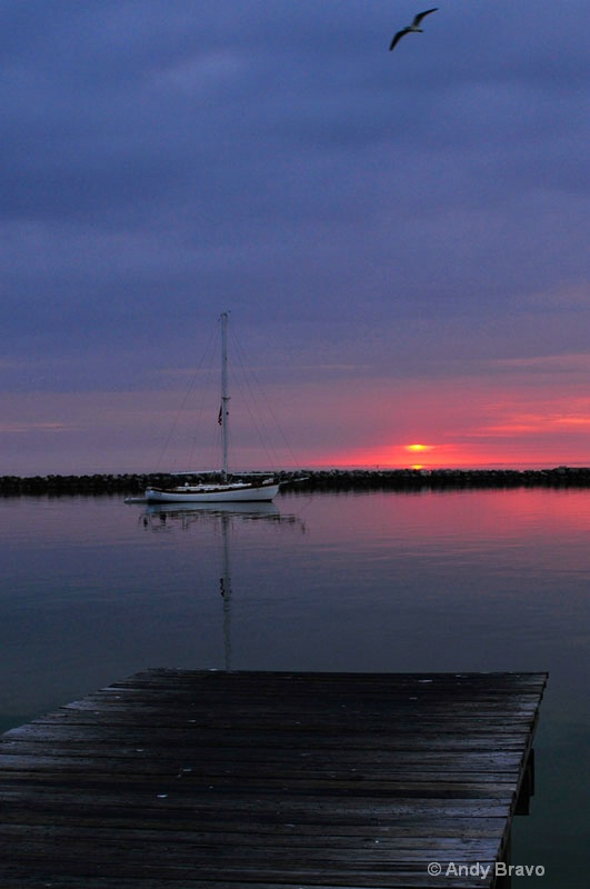 sunrise -st.-petersburg -fl-2012-2