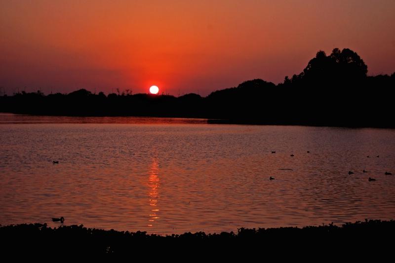 Sunrise @ lake