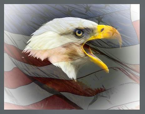 Eagle and Flag: 2 of USA symbols