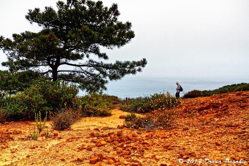 Hiking at Torrey Pines