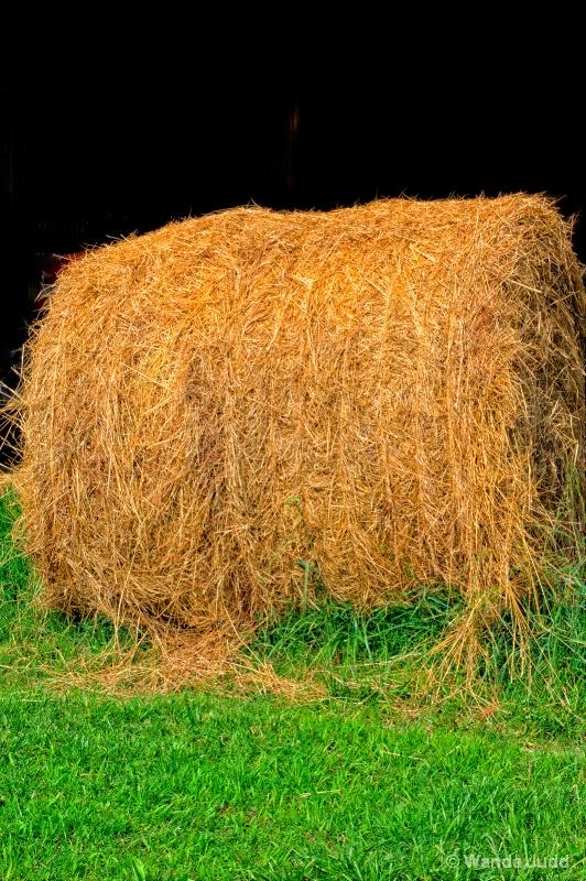 Carolyn's Hay