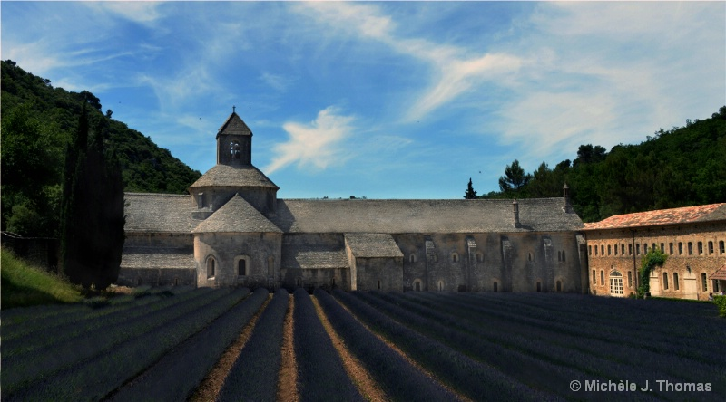 Senanque Abbey in Provence& Lavender Fields