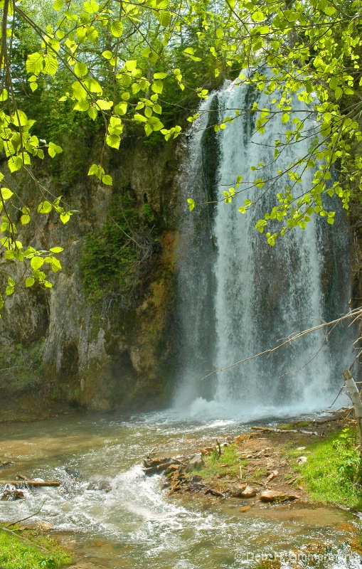 Lil Spearfish Falls in spring