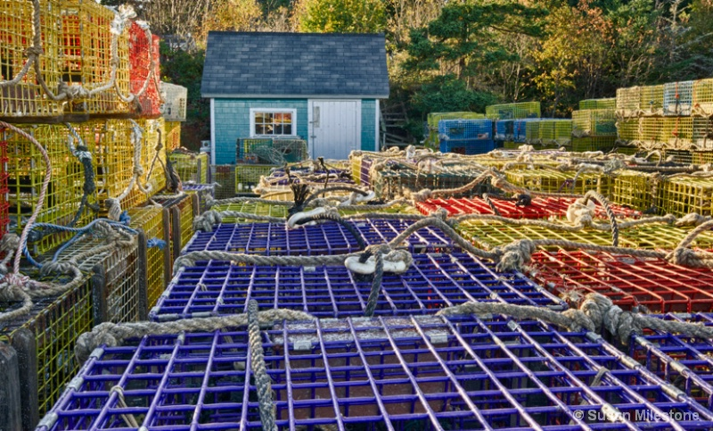 Lobster Traps Acadia, ME