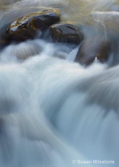 Salmon Cascade 9898