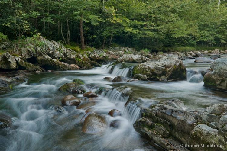 Greenbriar River 4193