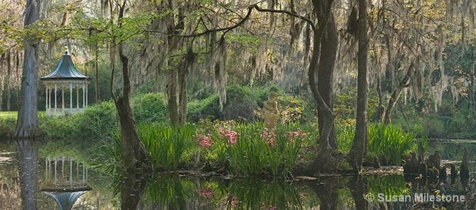 Magnolia Gardens Gazebo Reflection 8336