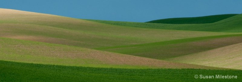 Palouse Fields 3570
