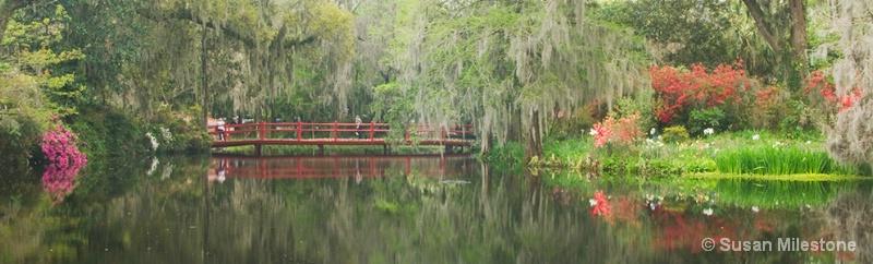 Red Bridge 1094 Magnolia Gardens