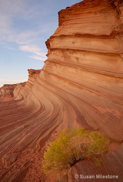 Waterholes Canyon 2098