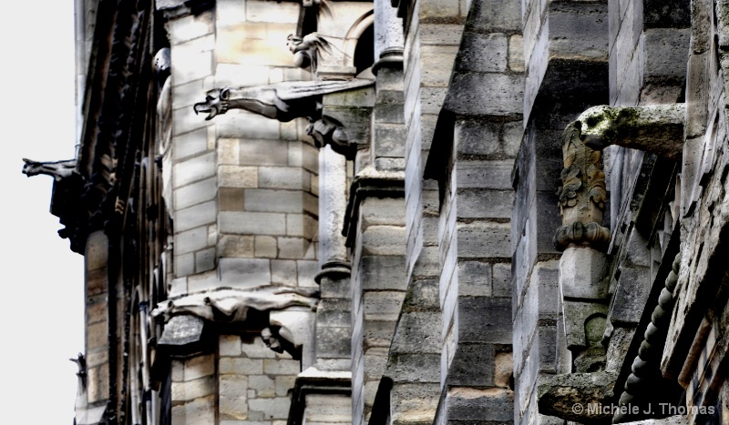 Gargoyles on the Side of Notre Dame, Paris