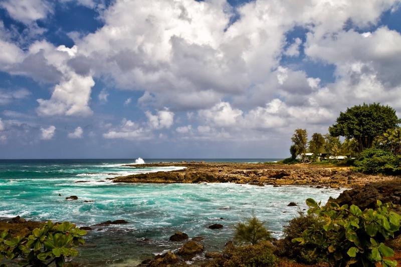 Hawaiian Splendor