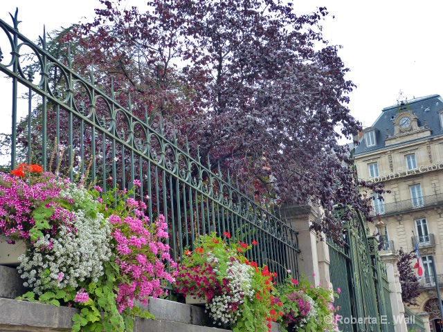 paris flowers