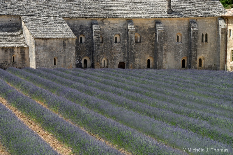 Lavender Fields at  Senanque Abbey, France !