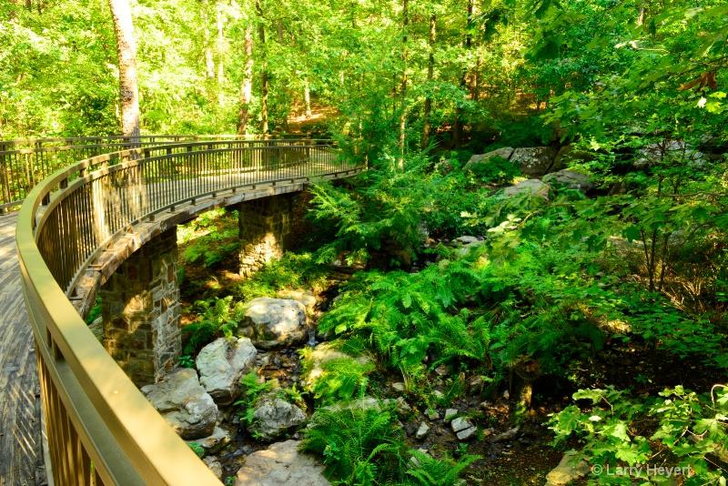 Garvan Woodland Gardens- Hot Springs, AR
