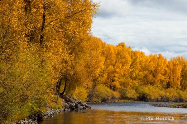 gunnison river 2