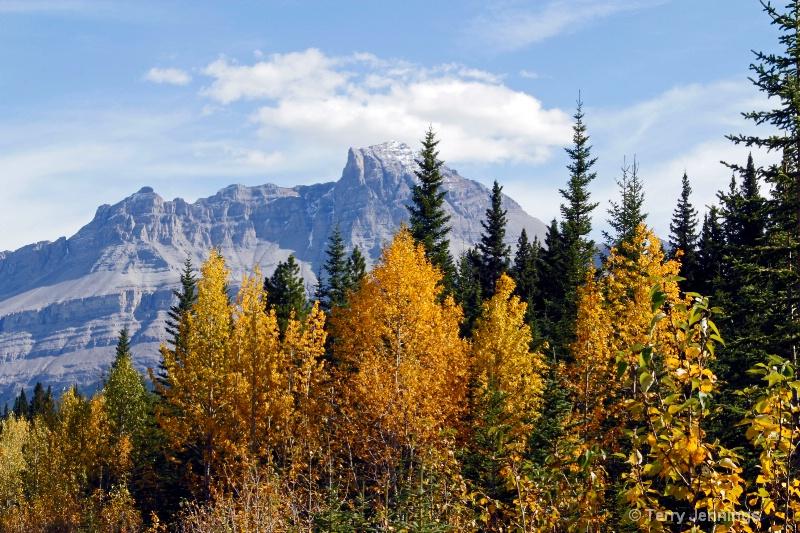 Canadian Rockies Color