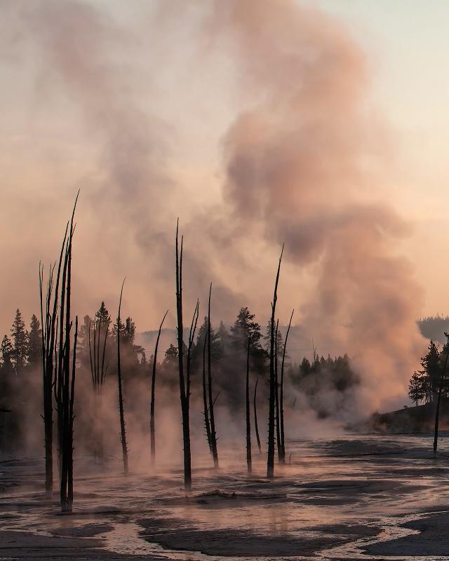 Natural Steam