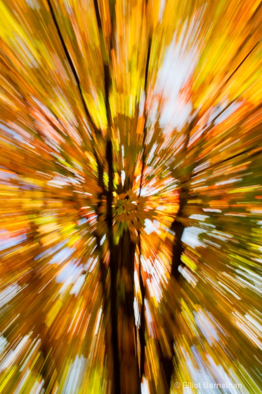 Fall Abstraction 9
