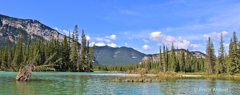 Bow River and Sulfur Mountain