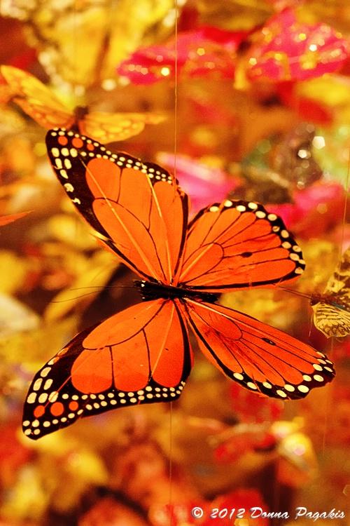 Dangling Butterflies