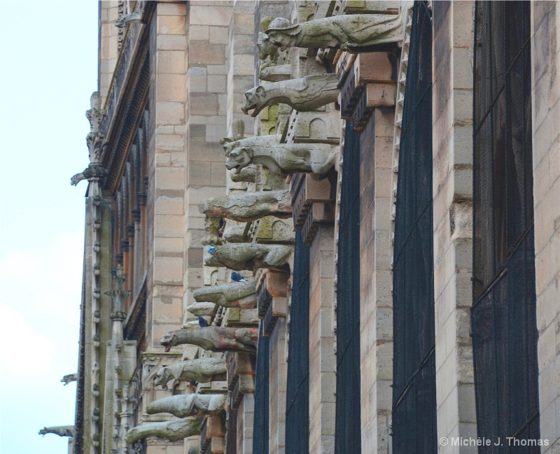 Gargoyles in Distress, Notre Dame Cathedral !