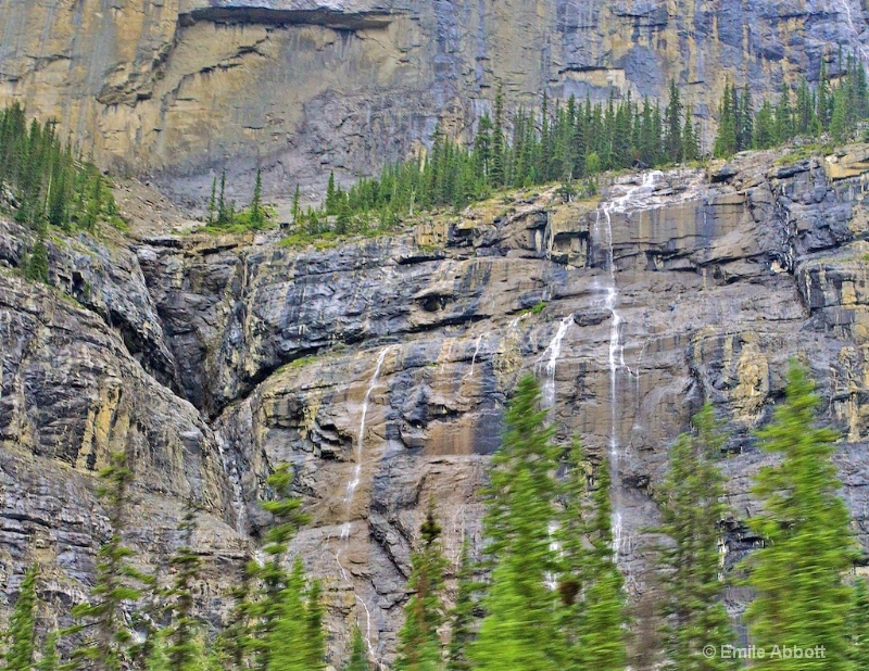Weeping Wall of Icefields Parkway