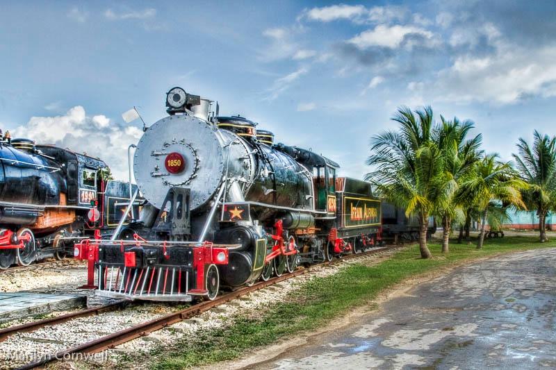 Tropical Steam