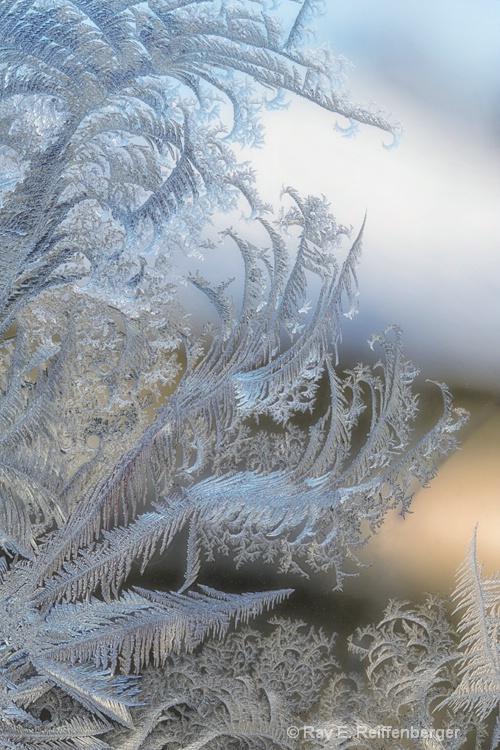 h0c8866c winter 12
