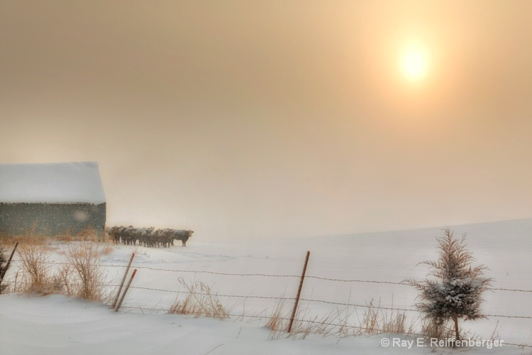 h0c9201 Winter 12