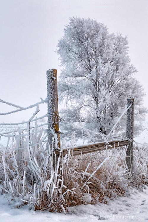 h0c9379 Winter 12