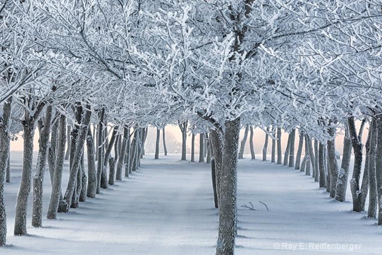 h0c9410 Winter 12