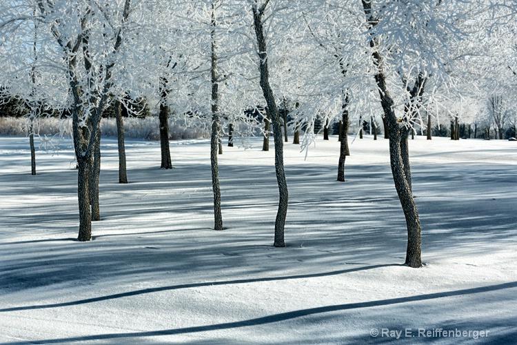 h0c9503 Winter 12