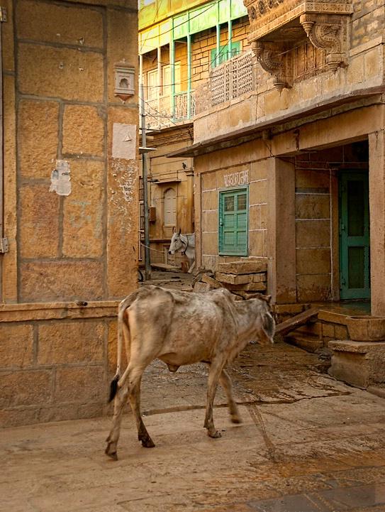 Havelis Streets of Jaisalmer