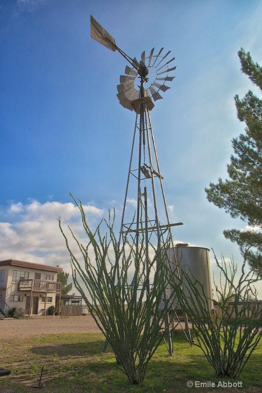 Classic West Texas