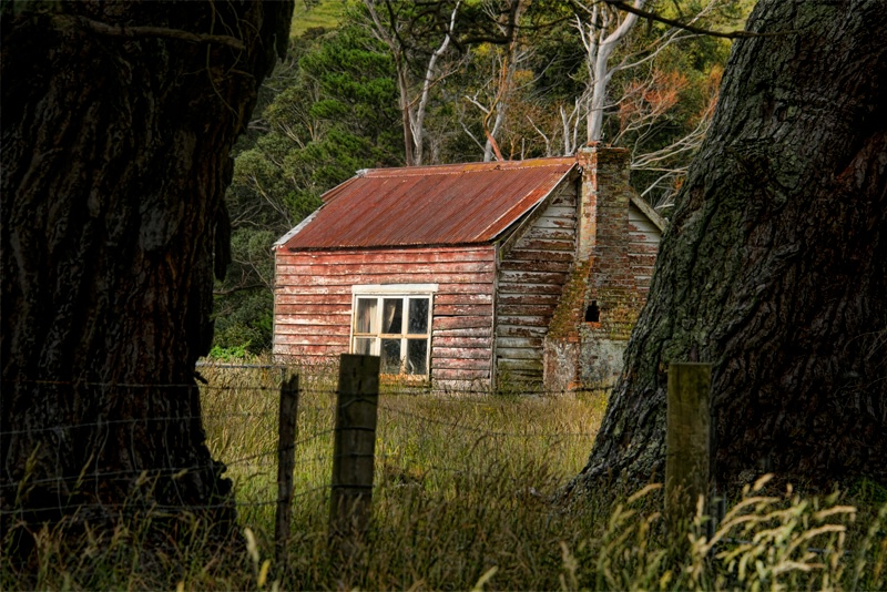 There Once Was A Cabin In The Woods