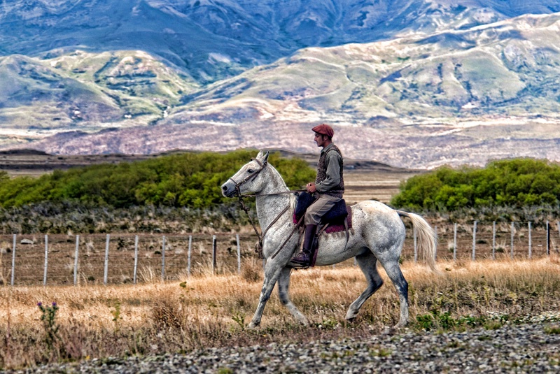 Patagonia Goucho